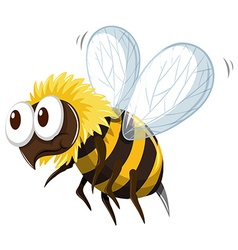 Little bee flying on white background vector image