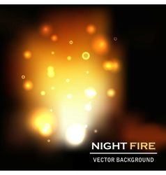 night fire background vector image