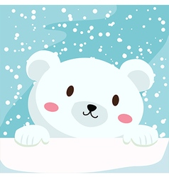 Close up Polar Bear vector image
