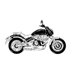 engraved style for posters decoration and print vector image