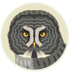 Great grey owl a bird vector