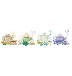 Organic herbal tea in cups and teapots vector