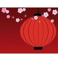 cherry blossom red vector image