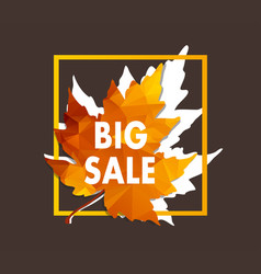 Autumn new season of sales and discounts deals vector