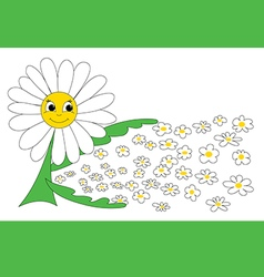 Caring daisy vector