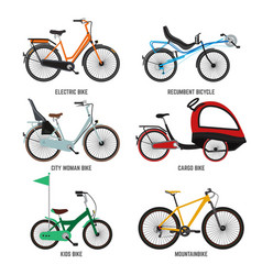 Different type of bicycles for male female and vector
