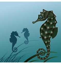 fish sea horse vector image
