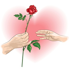 hands rose vector image