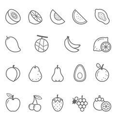 Lines icon set - fruit vector image vector image