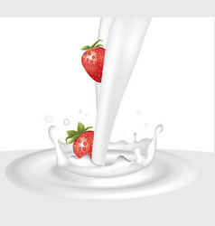 milk splash with strawberries vector image