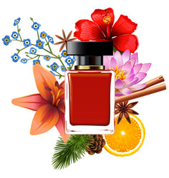Perfume with ingredients vector