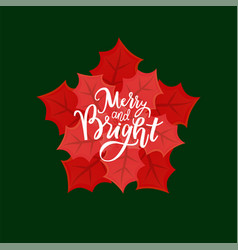 poinsettia flower merry and bright winter holidays vector image