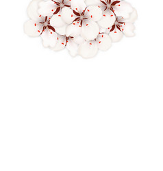 spring background with cherry blossom place vector image