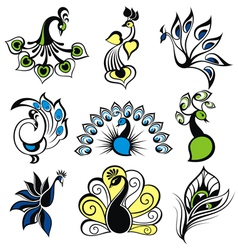Peacock birds vector image