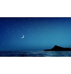 Blue Night Sky and sea with lots of Stars vector image