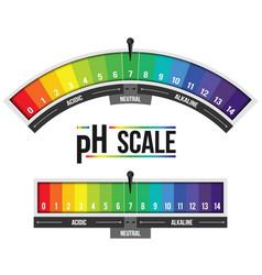 Creative ph scale value vector