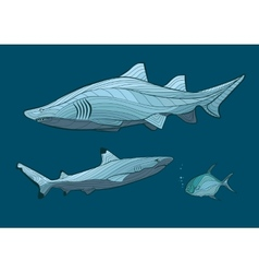 decorative sharks in sea with fish vector image
