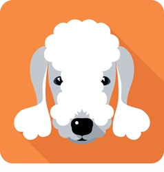 dog Bedlington Terrier icon flat design vector image