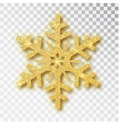 snowflake made golden glitter isolated on white vector image