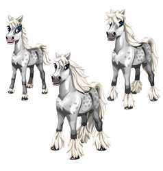 Stages of growing gray horse with a white mane vector