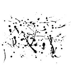 Black ink splatter background isolated on white vector image