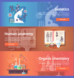 genetics human genome human anatomy anatomical vector image