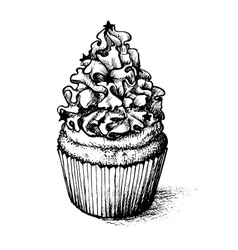 Hand drawn cupcake set for coloring book vector image vector image