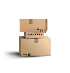 The boxes vector image