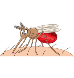 cartoon mosquito sucking blood vector image