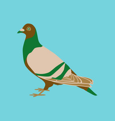 in flat style of dove vector image