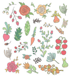 Large set hand-drawing flowers vector