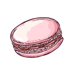 Macaroon cake for coffee houses or vector