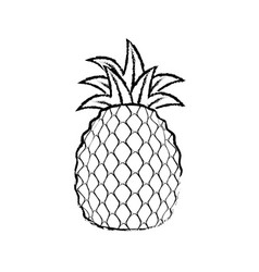 Pineapple delicious fruit vector