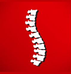 Spine diagnostics symbol design vector