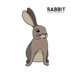 Rabbit isolated hand drawing vector image vector image