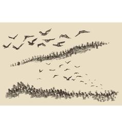 Hand drawn landscape flying birds forest vintage vector image vector image