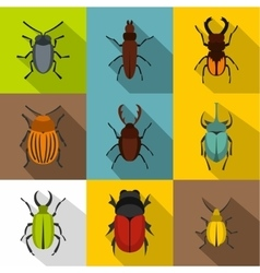 Crawling beetles icons set flat style vector