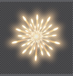 festive firework bursting salute of gold color vector image
