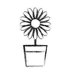 figure sunflower with petals inside to flowerpot vector image