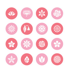 Flowers flat glyph icons beautiful garden plants vector