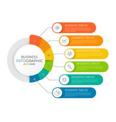 infographics circle option design vector image