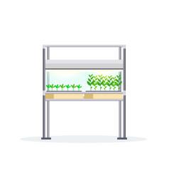 Modern indoor garden digital greenhouse electronic vector