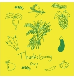 On yellow backgrounds doodle of thaksgiving vector