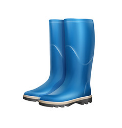 pair of rubber boots vector image