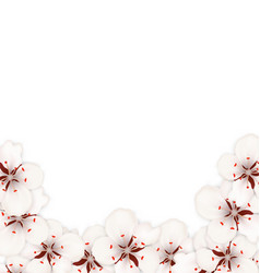 bstract border made in sakura flowers blossom vector image vector image