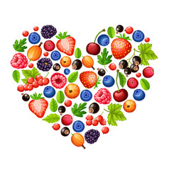 cartoon fresh healthy forest berries concept vector image vector image