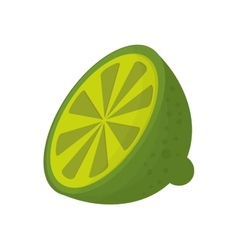 half lime icon vector image