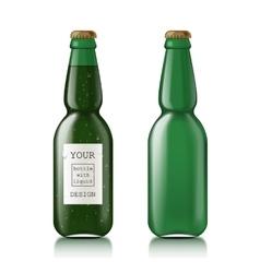 Transparent glass bottle vector image vector image