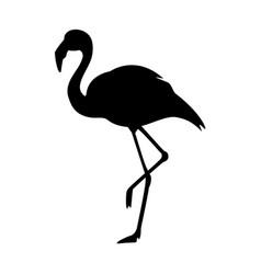 black silhouette flamingo logo vector image