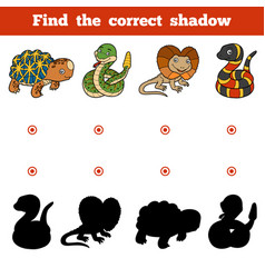 find correct shadow game for children set of vector image